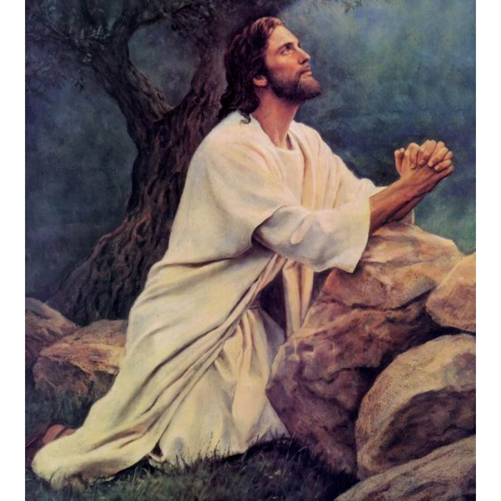 You are currently viewing If Jesus Wants Everyone Saved, Why Did He Not Pray For The World?