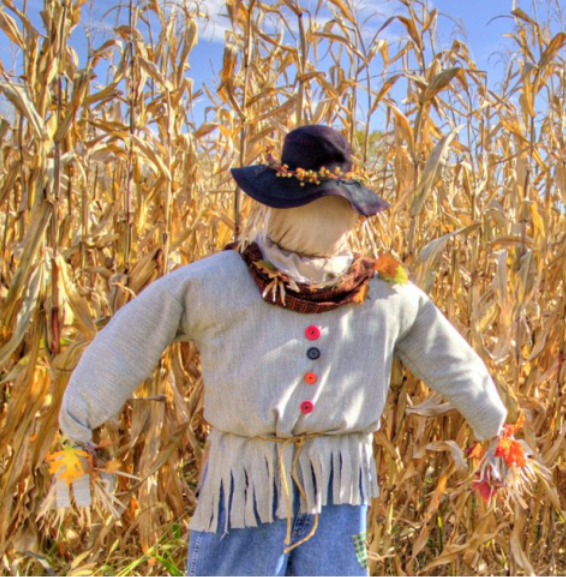 You are currently viewing Logical Fallacy Series — Part 3: The Straw Man