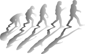 Why Evolution Shouldn't Be A Surprise To Christians